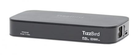 TizzBird F13 är en Android-baserad mediebox som fixar att ta emot och spela upp SVT Play och andra play-tjänster direkt på en teve utan inblandning av en dator.