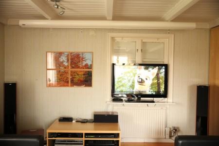 I dagsljus utan mörkläggning är det bara tv som fungerar. Men inte ens tv:n ger ideal bild i dagsljus.