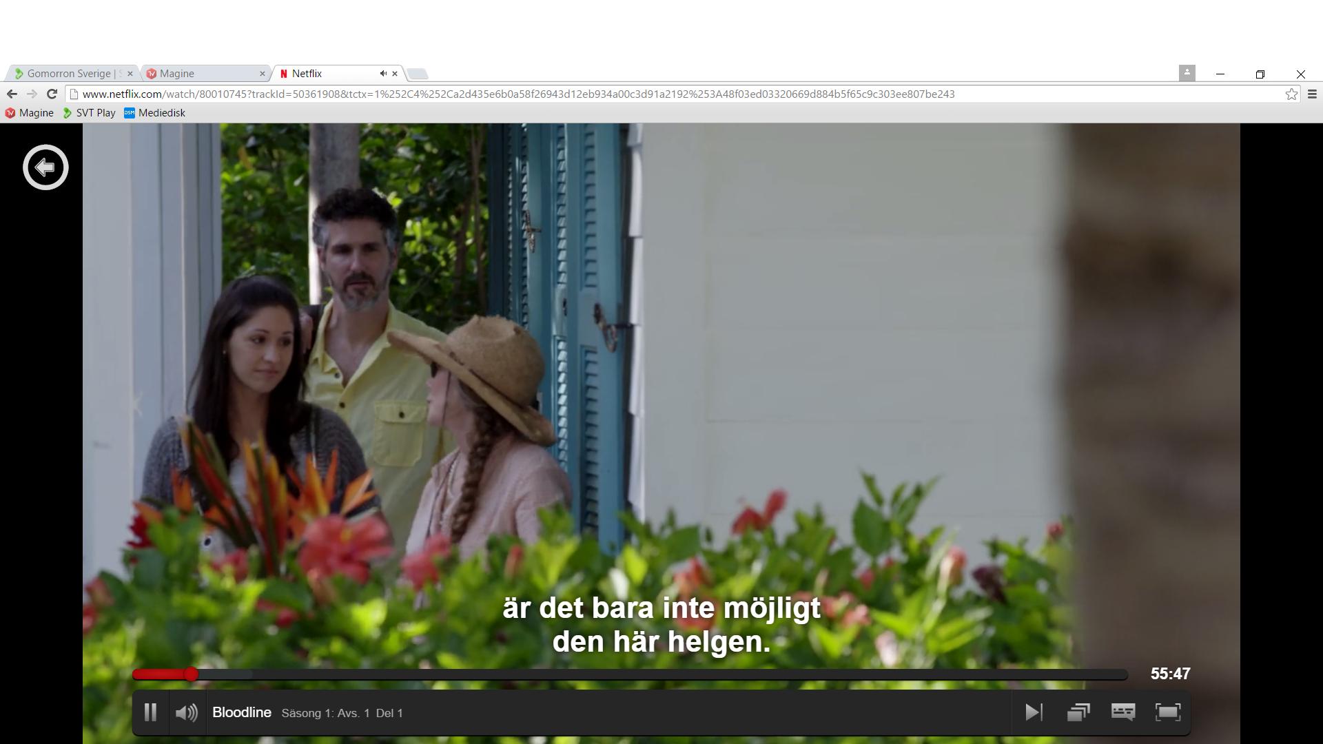 Med en komplett webbläsare för Windows finns det inga begränsningar för vad du kan titta på för strömmande innehåll. Netflix fungerar dessutom ypperligt.