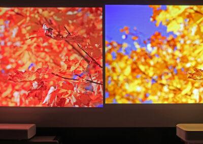 Rött eller gult kort för UST? Nej, det blir grönt ljus för både Samsung LSP9T och Epson LS300W!