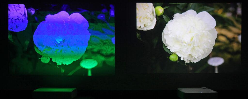 Den största skillnaden mellan DLP- och LCD-tekniken är hur bilden sätts samman färg för färg. Fotograferat med 1/1000 sekund ser kameran tydligt DLP-färgerna separareras i tid medan LCD visar sina färger samtidigt. Våra ögon ser dock ingen sådan skillnad utan kan i värsta fall uppleva färgskiftningarna som regnbågseffekter.